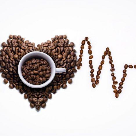 Selva Maya Coffee & Hotel Barrancas del Cobre